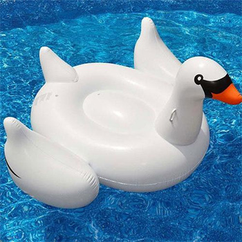 Swan or Pink Flamingo Floater - $39.99 With FREE Shipping!